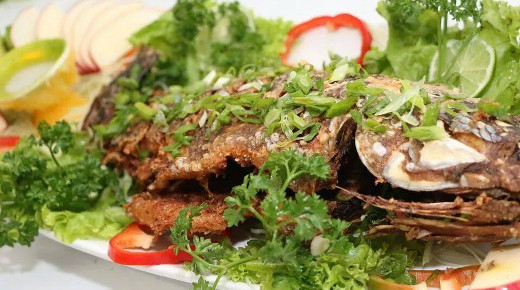 Peixes-toku-sushi